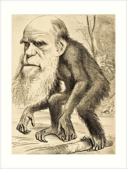 Darwin caricature